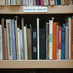Dead Library – Books Unread