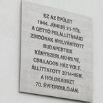 KIM plaque
